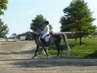 Click to view album: Regionals 2008